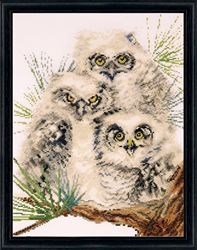 Borduurpakket Owl Trio - Design Works