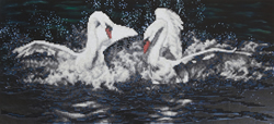 Diamond Painting White Swans - Freyja Crystal