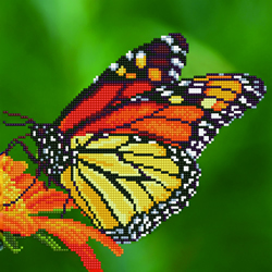 Diamond Art Monarch Butterfly - Leisure Arts