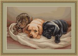 Petit Point Borduurpakket Three dogs - Luca-S