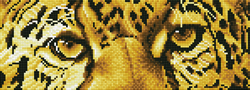 Diamond Dotz Leopard Spy - Needleart World