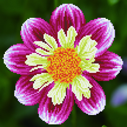 Diamond Dotz Daisy-A-Day - Needleart World