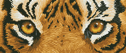Diamond Dotz Tiger Spy - Needleart World