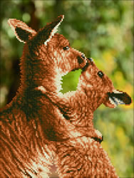 Diamond Dotz Kissing Kangas - Needleart World