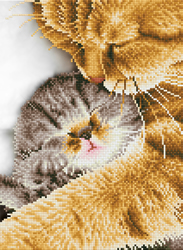 Diamond Dotz Tender Moment - Needleart World