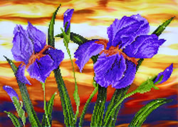 Diamond Dotz Iris Sunset - Needleart World
