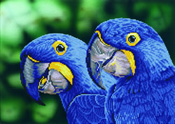Diamond Dotz Blue Hyacinth Macaws - Needleart World