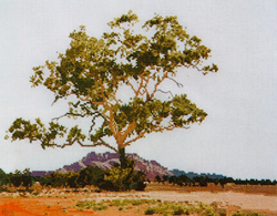 Borduurpatroon Macdonnell Ranges - Ross Originals