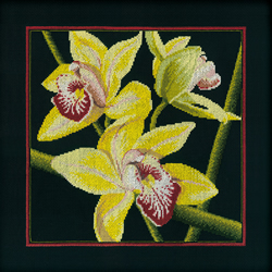 Borduurpakket Orchids Cymbidium - RTO