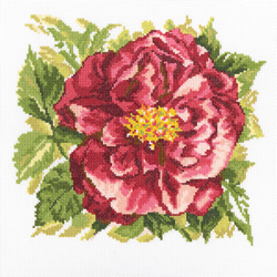 Borduurpakket English Rose - RTO