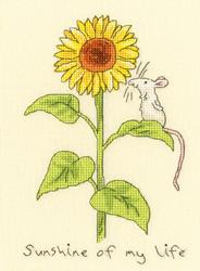 Borduurpakket Anita Jeram - Sunshine of my life - Bothy Threads