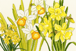 Cross stitch kit Daffodil Blooms - Bothy Threads