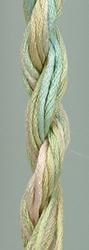 Waterlilies Shenandoah - The Caron Collection