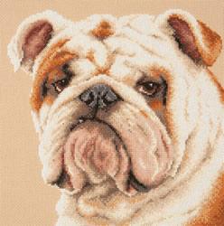 Borduurpakket Bulldog - Chudo Igla (Magic Needle)