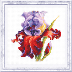 Cross stitch kit Iris - Chudo Igla