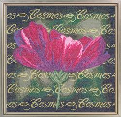 Cross Stitch Chart Cosmos - Janlynn