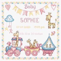 Borduurpakket Baby Girl Record - Leti Stitch