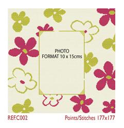 Borduurpatroon Photoframe Flowers - LiliPoints