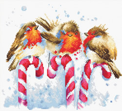 Borduurpakket Christmas Birds - Luca-S