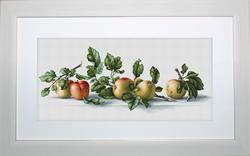 Borduurpakket Apples - Luca-S