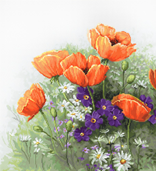 Cross stitch kit Poppies - Luca-S