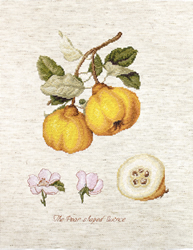 Cross stitch kit The Pear shaped Quince - Luca-S