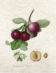 Cross stitch kit The Nectarine Plum - Luca-S