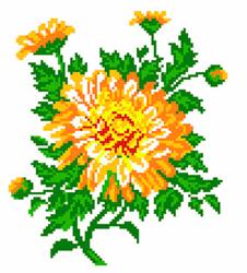 Pre-printed Aida Calendula Flower - Matryonin Posad