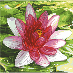 Pre-printed Aida Water Lily - Matryonin Posad