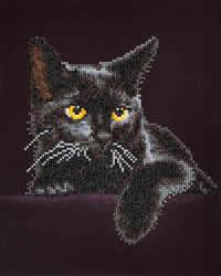 Diamond Dotz Midnight Cat - Needleart World