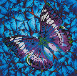 Diamond Dotz Flutter by Mauve - Needleart World