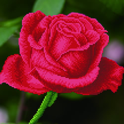 Diamond Dotz Rose Bud - Needleart World