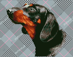 Diamond Dotz Noble Dachsie - Needleart World