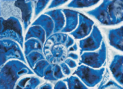Diamond Dotz Blue Nautilus - Needleart World