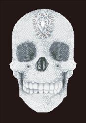 Diamond Dotz Crystal Skull - Needleart World