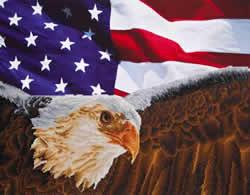 Diamond Dotz Bald Eagle & Flag - Needleart World