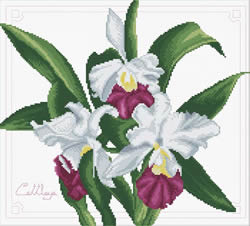 Pre-printed cross stitch kit Bouquet of Orchids - Needleart World