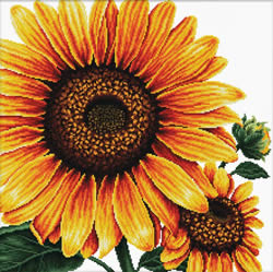 Voorbedrukt borduurpakket Sunflower - Needleart World