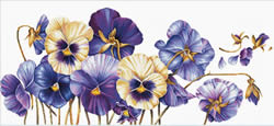 Voorbedrukt borduurpakket Purple Pansies - Needleart World