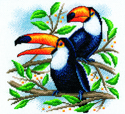 Borduurpakket Toucan - PANNA