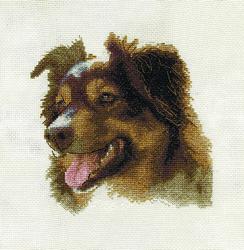 Borduurpakket English Shepherd - PANNA