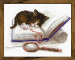 Borduurpakket Kitten on the Book - RIOLIS