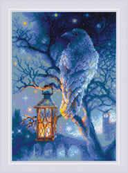 Cross stitch kit Wise Raven - RIOLIS