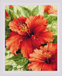 Cross stitch kit Hibiscus - RIOLIS