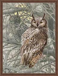 Borduurpakket Eagle Owl - RIOLIS