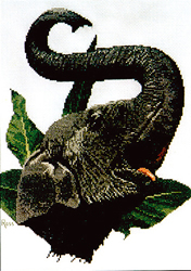 Cross Stitch Chart Indian Elephant - Ross Originals