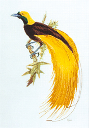 Cross Stitch Chart Greater Bird of Paradise - Ross Originals