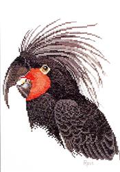 Borduurpatroon Palm Cockatoo - Ross Originals