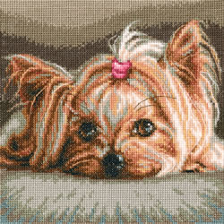 Cross stitch kit Pet - RTO