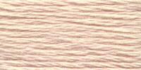 Venus Embroidery Floss #25 - 2681